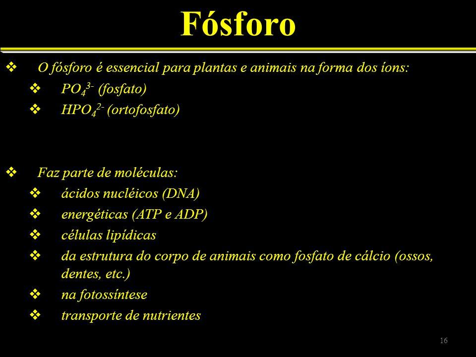 Fósforo O fósforo é essencial para plantas e animais na forma dos íons: PO43- (fosfato) HPO42- (ortofosfato)