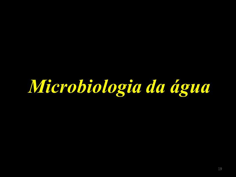 Microbiologia da água