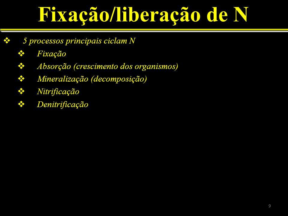 Fixação/liberação de N