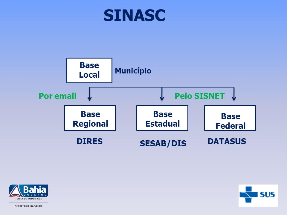SINASC Base Local Por  Pelo SISNET Base Regional Base Estadual