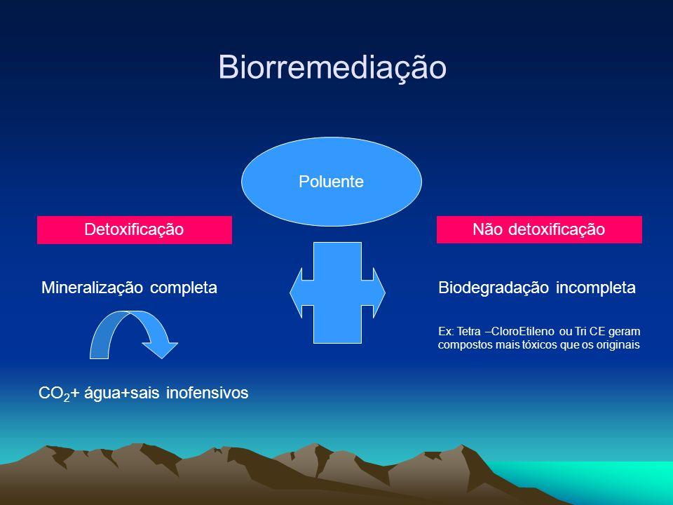Biorremediação Poluente Detoxificação Não detoxificação