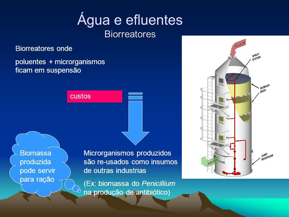 Água e efluentes Biorreatores