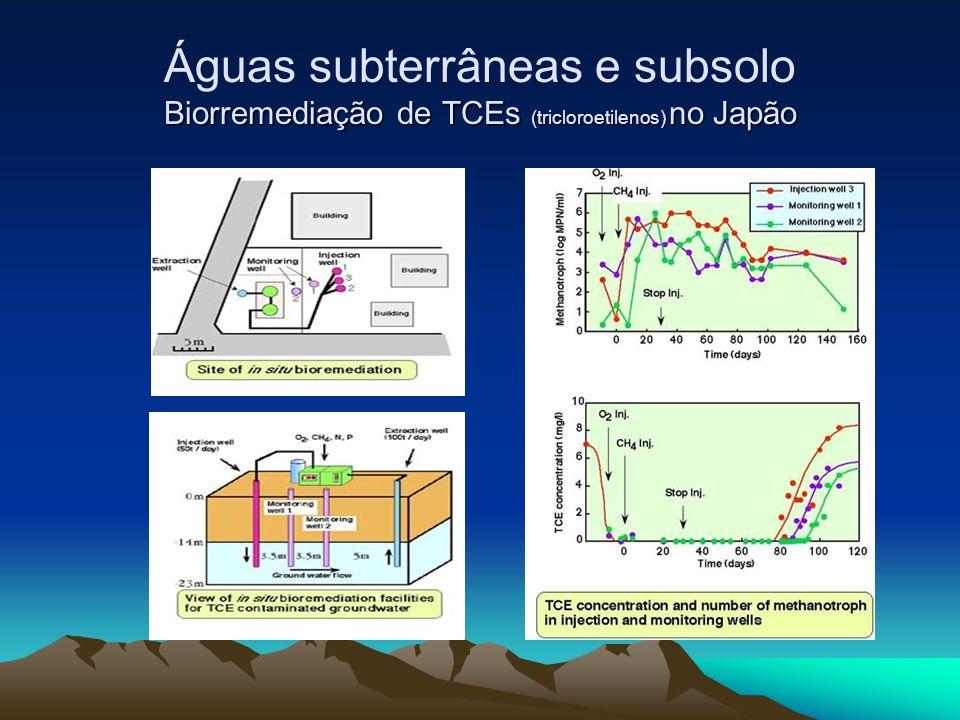 Águas subterrâneas e subsolo Biorremediação de TCEs (tricloroetilenos) no Japão