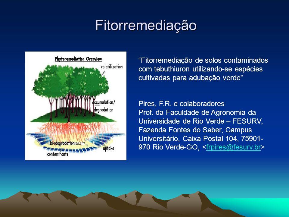 Fitorremediação Fitorremediação de solos contaminados com tebuthiuron utilizando-se espécies cultivadas para adubação verde