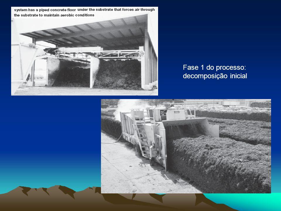 Fase 1 do processo: decomposição inicial