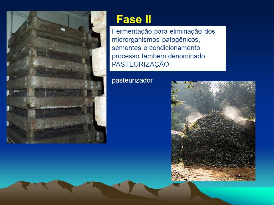 Fase II Fermentação para eliminação dos microrganismos patogênicos, sementes e condicionamento processo também denominado PASTEURIZAÇÃO.