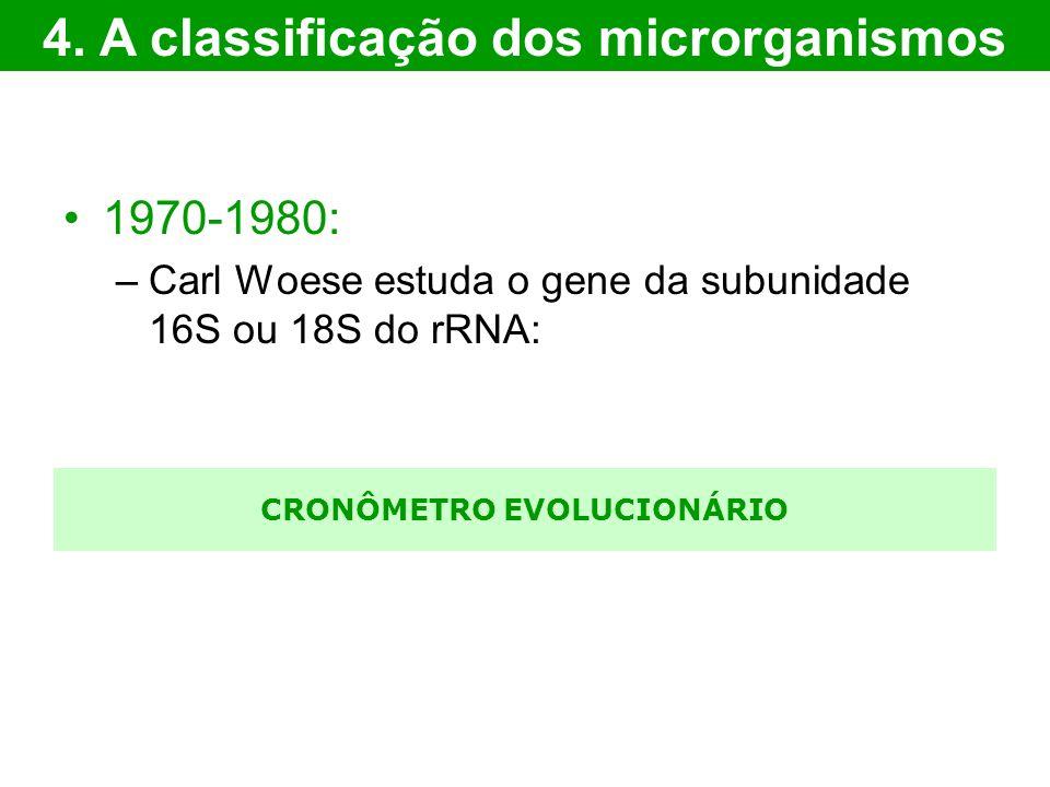 4. A classificação dos microrganismos CRONÔMETRO EVOLUCIONÁRIO