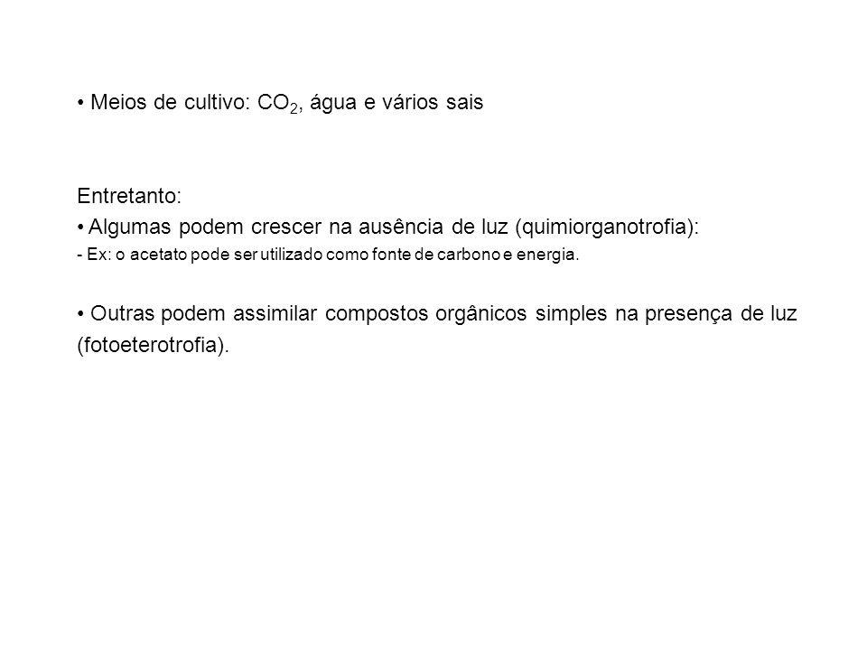 Meios de cultivo: CO2, água e vários sais