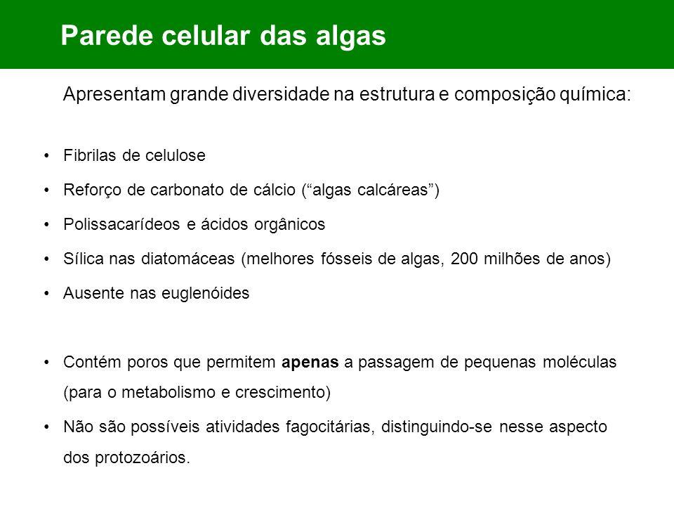 Parede celular das algas