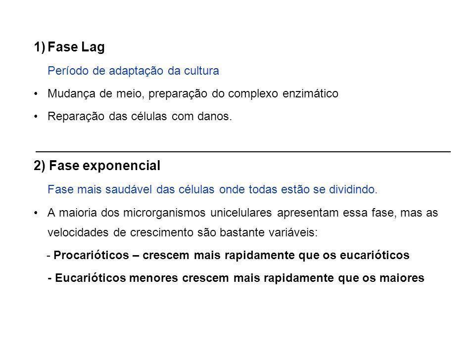 Fase Lag 2) Fase exponencial Período de adaptação da cultura