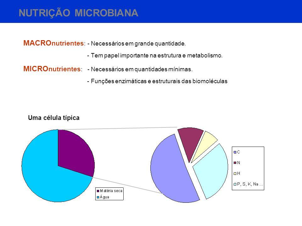 NUTRIÇÃO MICROBIANA MACROnutrientes: - Necessários em grande quantidade. - Tem papel importante na estrutura e metabolismo.