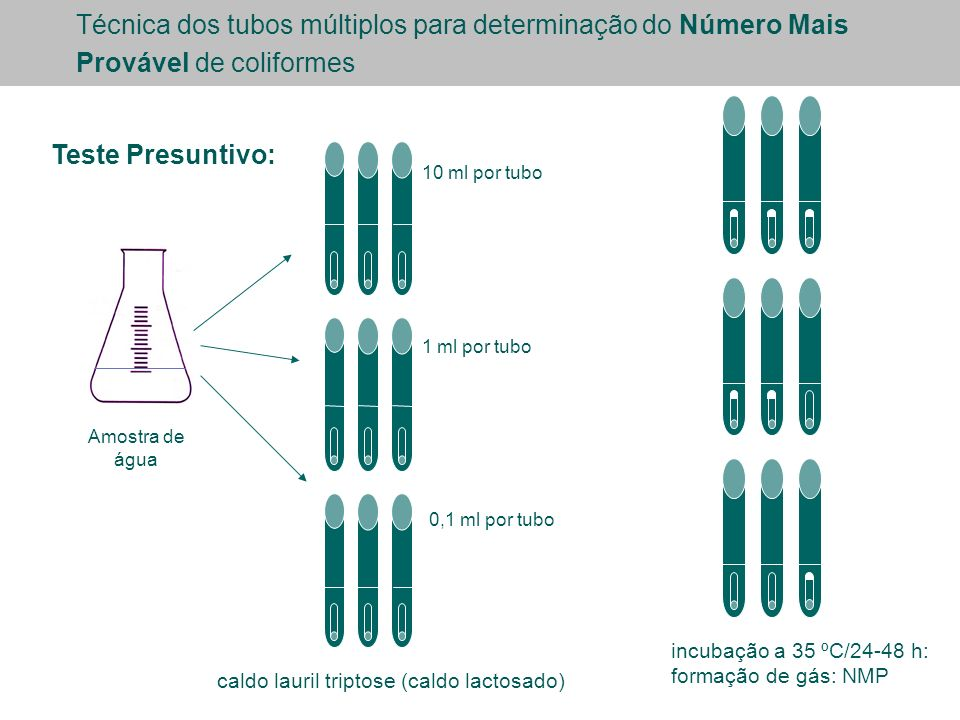 Técnica dos tubos múltiplos para determinação do Número Mais