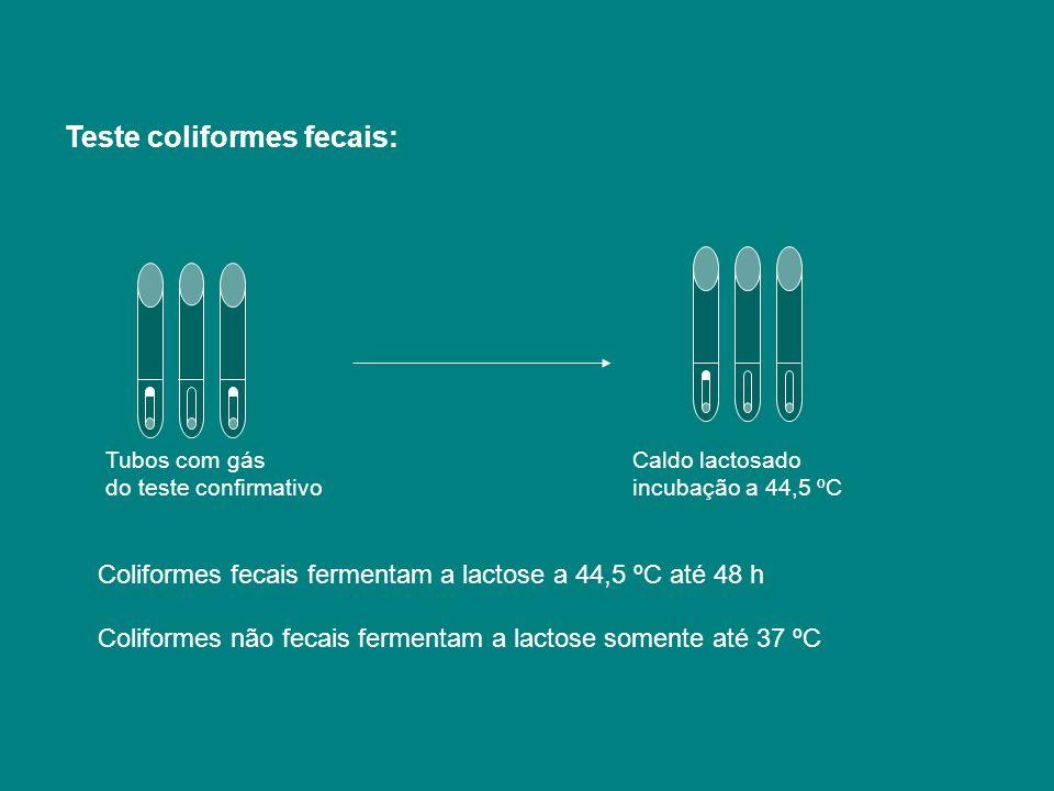 Teste coliformes fecais: