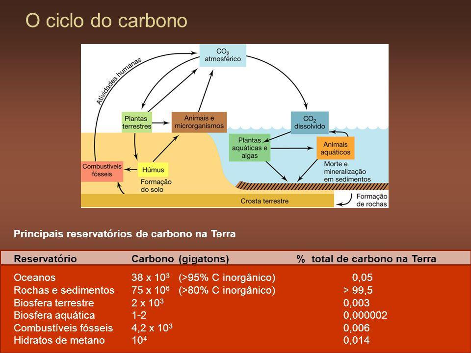O ciclo do carbono Principais reservatórios de carbono na Terra