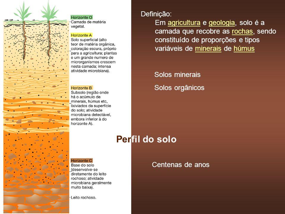 Perfil do solo Definição: