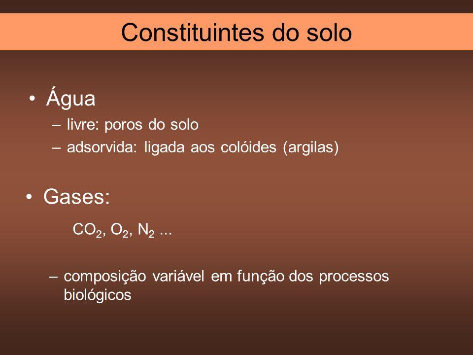 Constituintes do solo Água Gases: CO2, O2, N2 ... livre: poros do solo