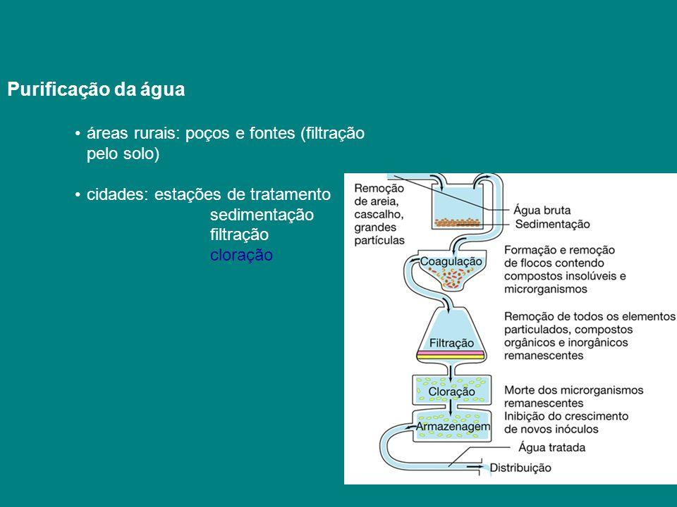 Purificação da água áreas rurais: poços e fontes (filtração pelo solo)