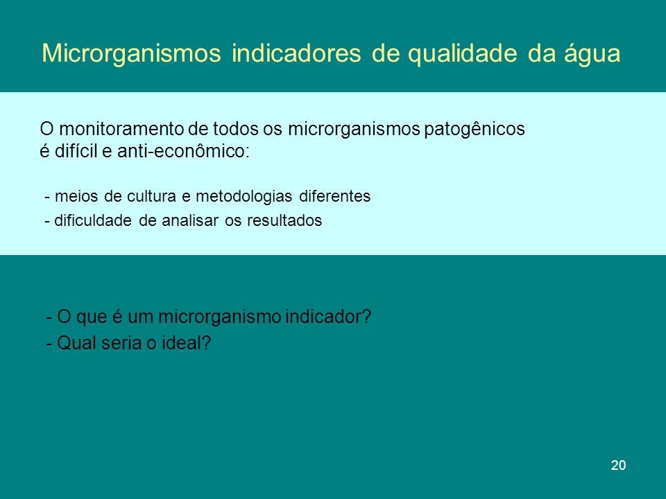 Microrganismos indicadores de qualidade da água