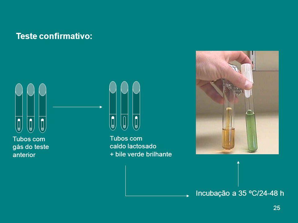 Teste confirmativo: Incubação a 35 ºC/24-48 h Tubos com Tubos com