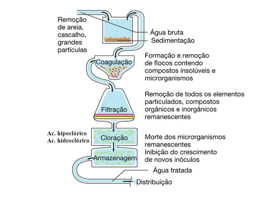 Ac. hipoclórico Ac. hidroclórico