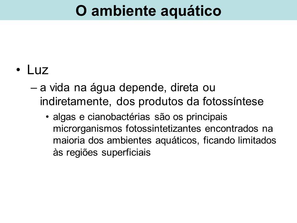 O ambiente aquático Luz