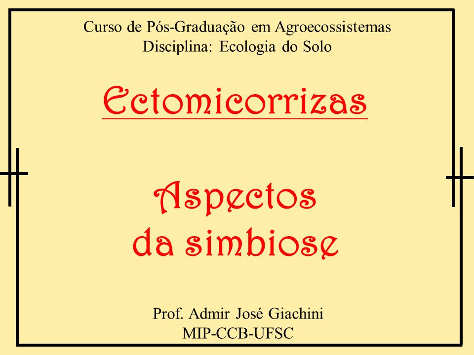 Ectomicorrizas Aspectos da simbiose