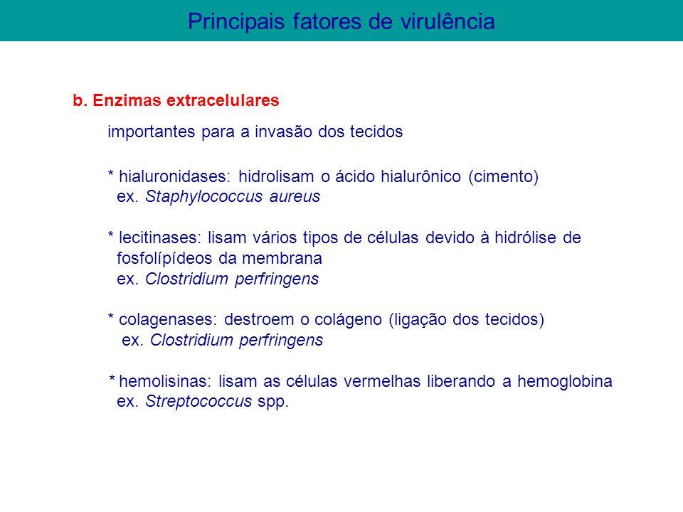 2.2.2. Enzimas extracelulares