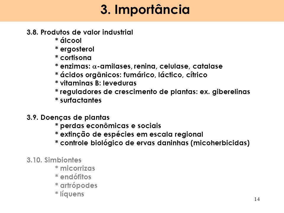 3. Importância 3.8. Produtos de valor industrial * álcool * ergosterol