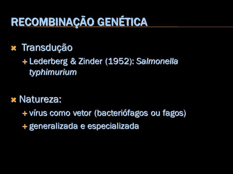 RECOMBINAÇÃO GENÉTICA