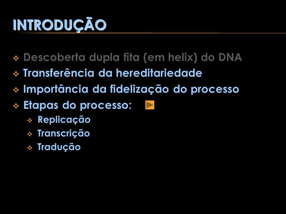 INTRODUÇÃO Descoberta dupla fita (em helix) do DNA