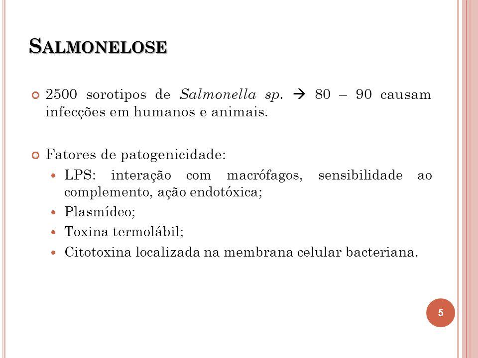 Salmonelose 2500 sorotipos de Salmonella sp.  80 – 90 causam infecções em humanos e animais. Fatores de patogenicidade: