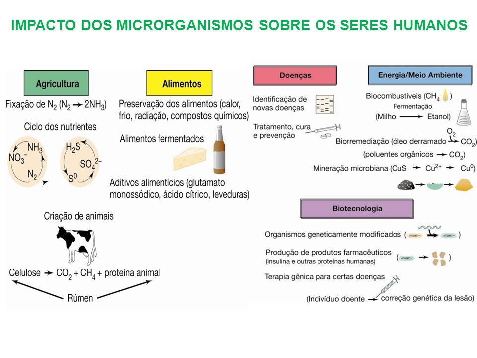 IMPACTO DOS MICRORGANISMOS SOBRE OS SERES HUMANOS