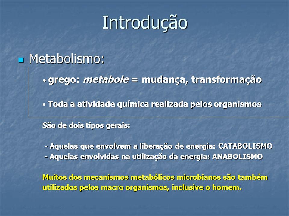 Introdução Metabolismo: grego: metabole = mudança, transformação