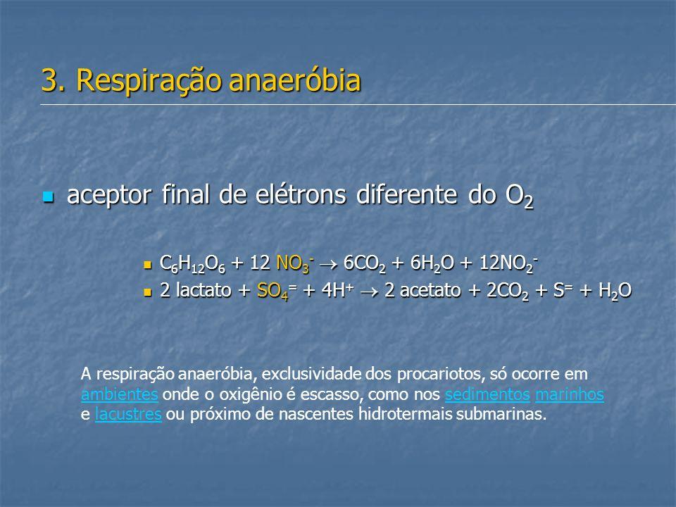 3. Respiração anaeróbia aceptor final de elétrons diferente do O2