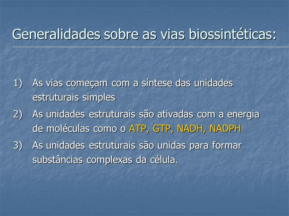 Generalidades sobre as vias biossintéticas:
