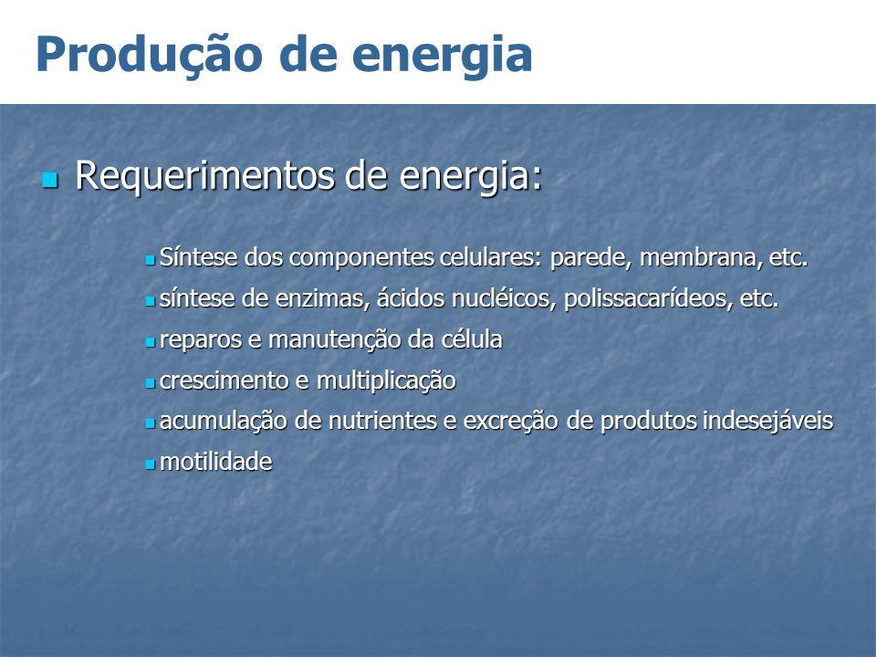 Produção de energia Requerimentos de energia: