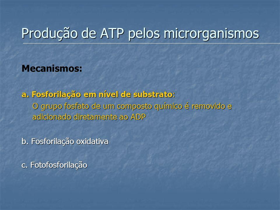 Produção de ATP pelos microrganismos