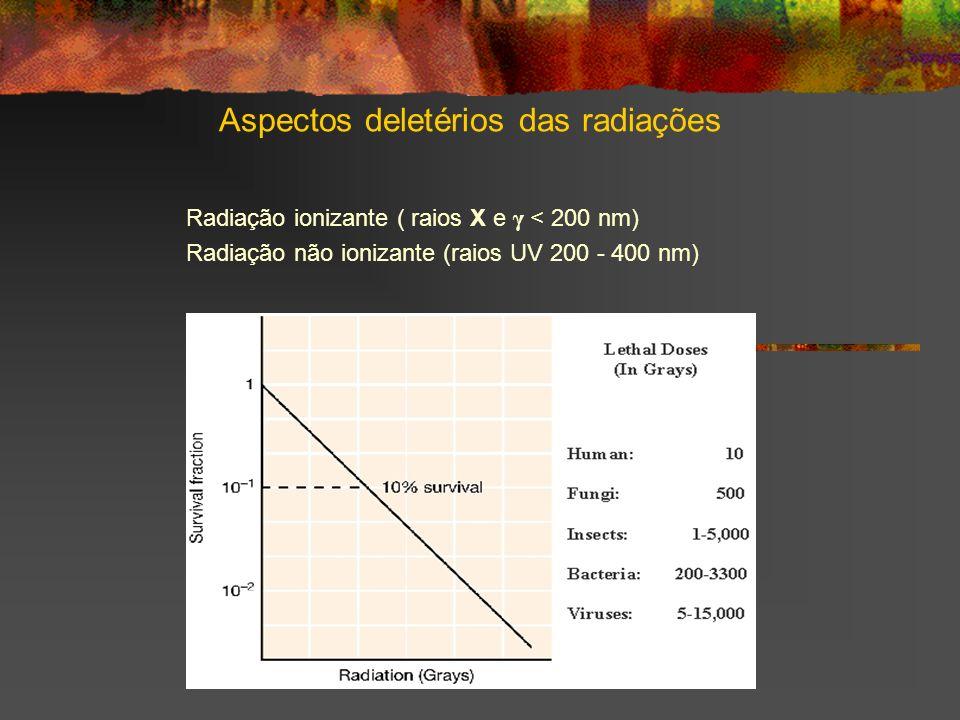 Aspectos deletérios das radiações