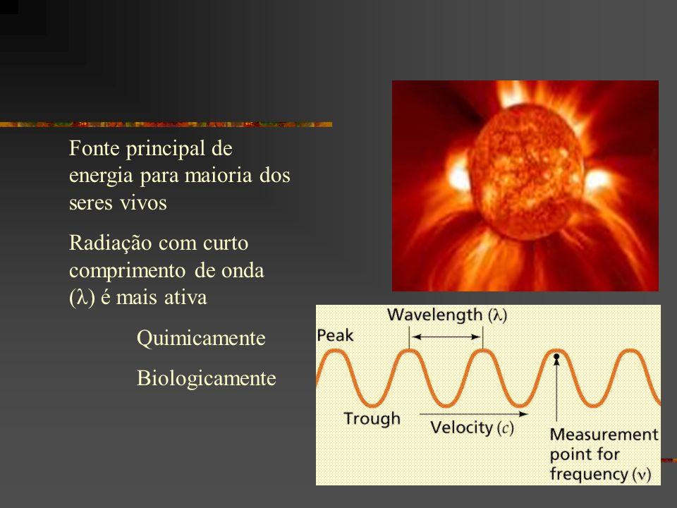 Fonte principal de energia para maioria dos seres vivos