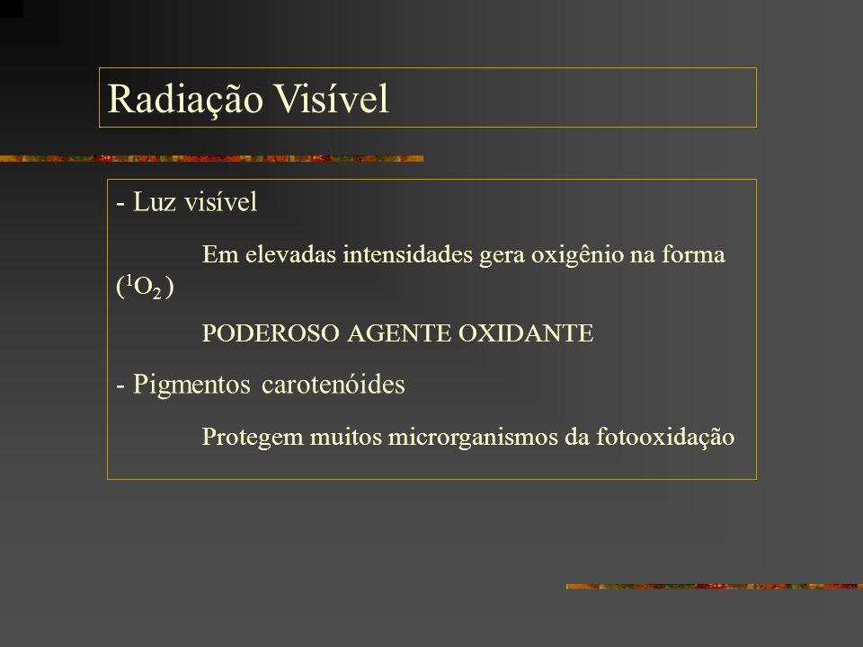 Radiação Visível - Luz visível