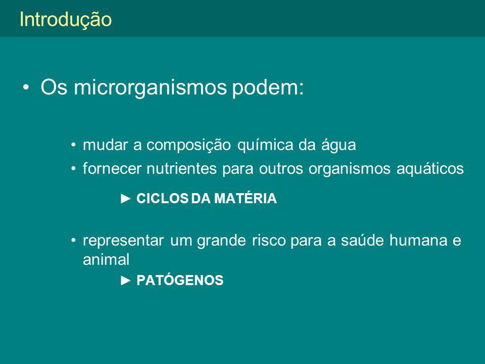Os microrganismos podem:
