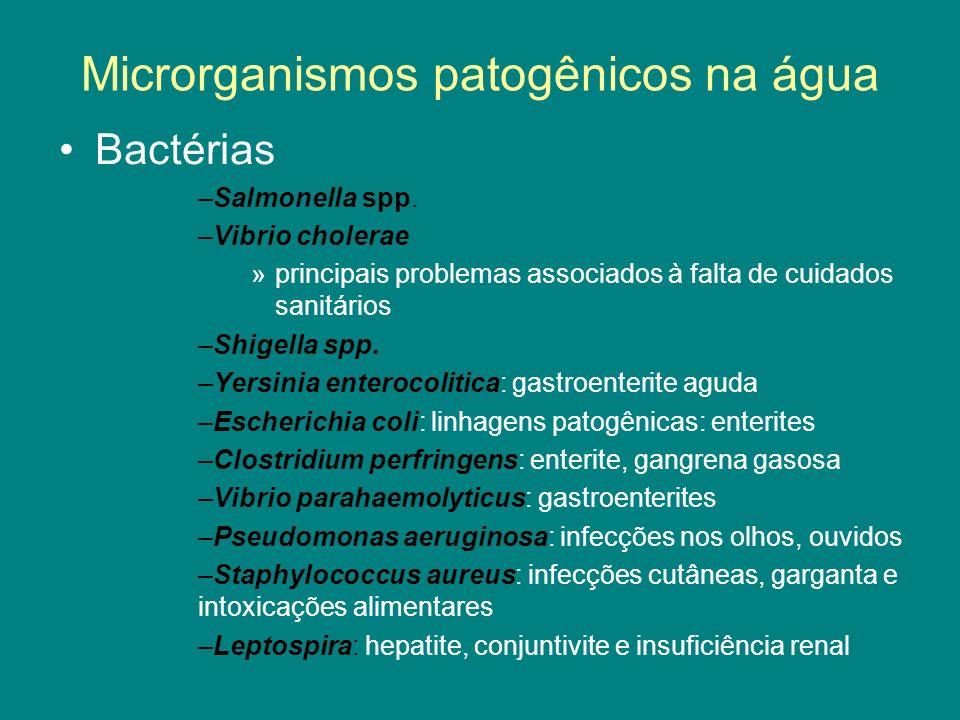 Microrganismos patogênicos na água