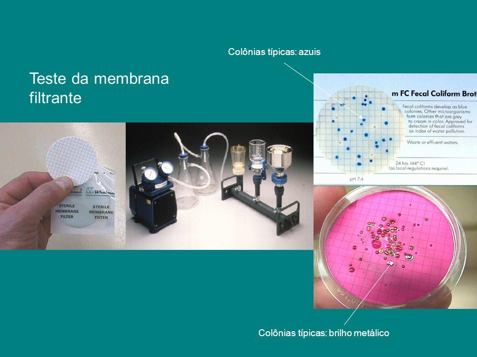 Teste da membrana filtrante Colônias típicas: azuis
