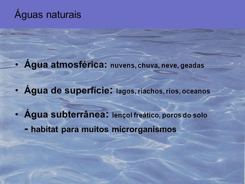 - habitat para muitos microrganismos