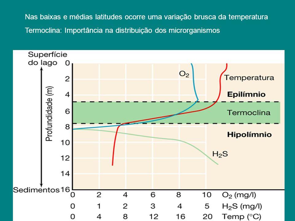 Nas baixas e médias latitudes ocorre uma variação brusca da temperatura