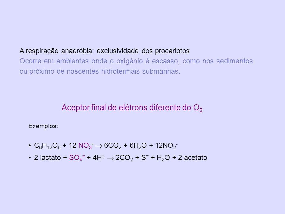 Aceptor final de elétrons diferente do O2