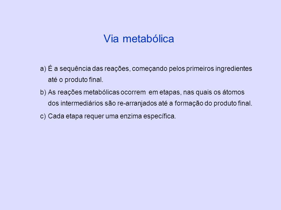 Via metabólicaÉ a sequência das reações, começando pelos primeiros ingredientes até o produto final.