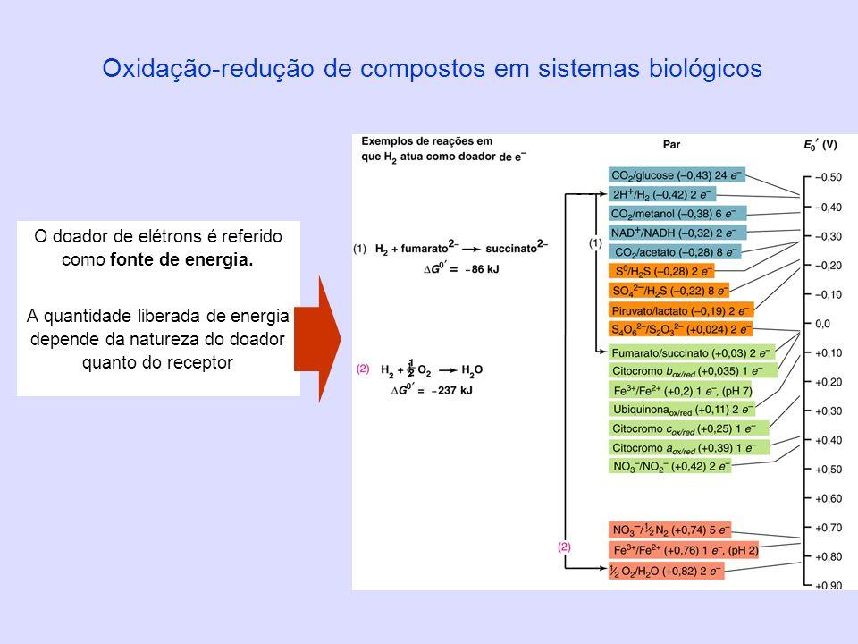 Oxidação-redução de compostos em sistemas biológicos