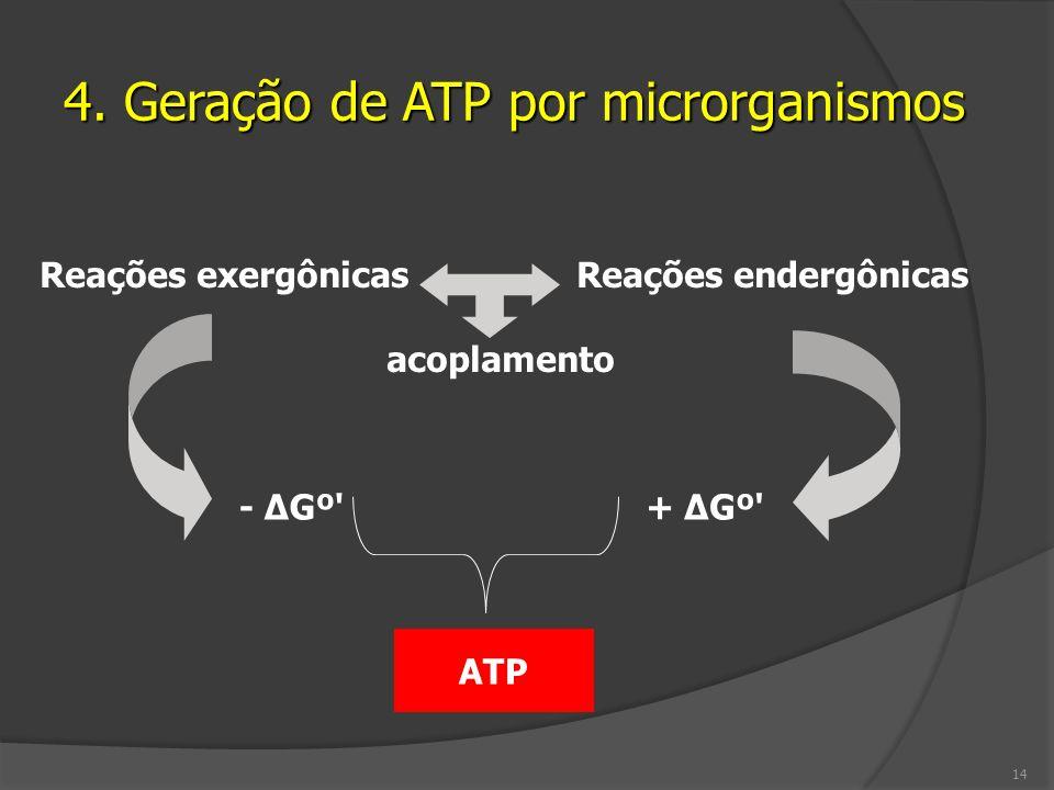 4. Geração de ATP por microrganismos