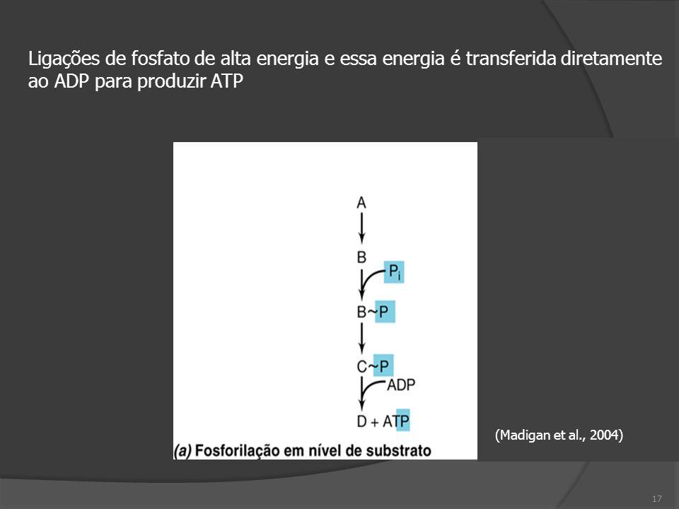 ao ADP para produzir ATP